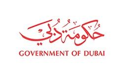 cctv system dubai, Dubai Police Dubai